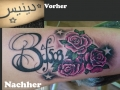 Cover Up Rosen OA innen